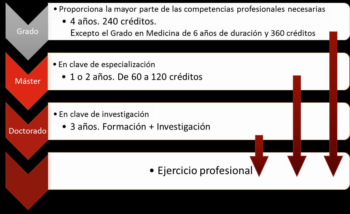 Estudios oficiales